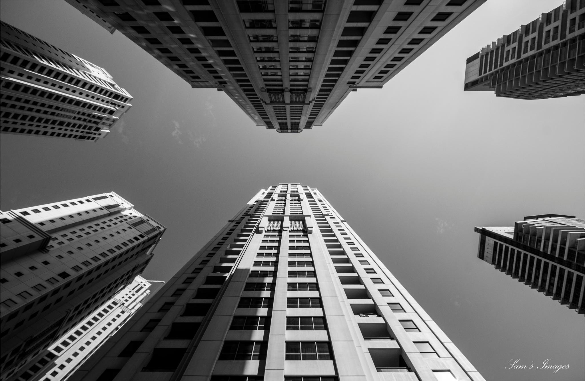 Sky Scrapers. by Sam Khalil