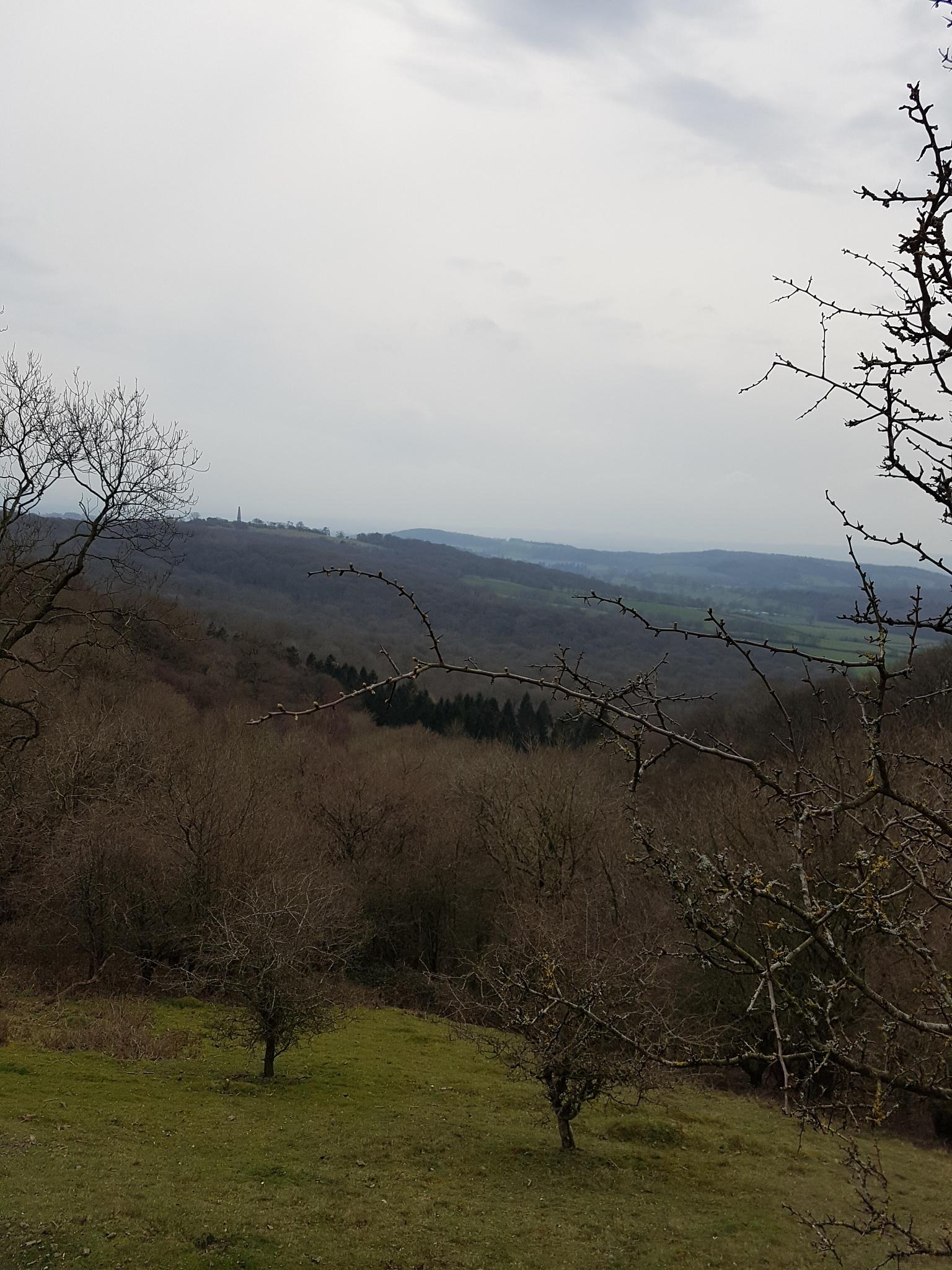Malvern Hills  by BrendaJob