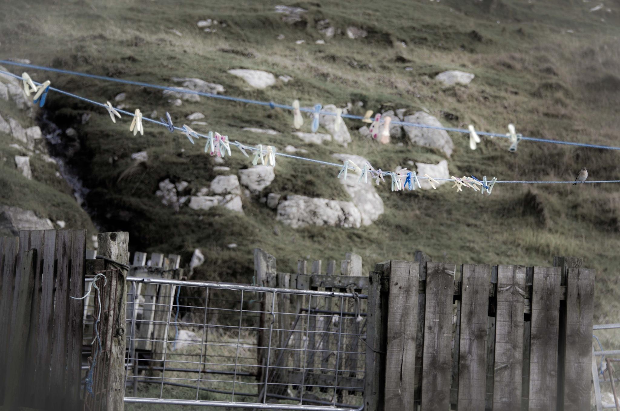 crofter life - scotland by Paulomac