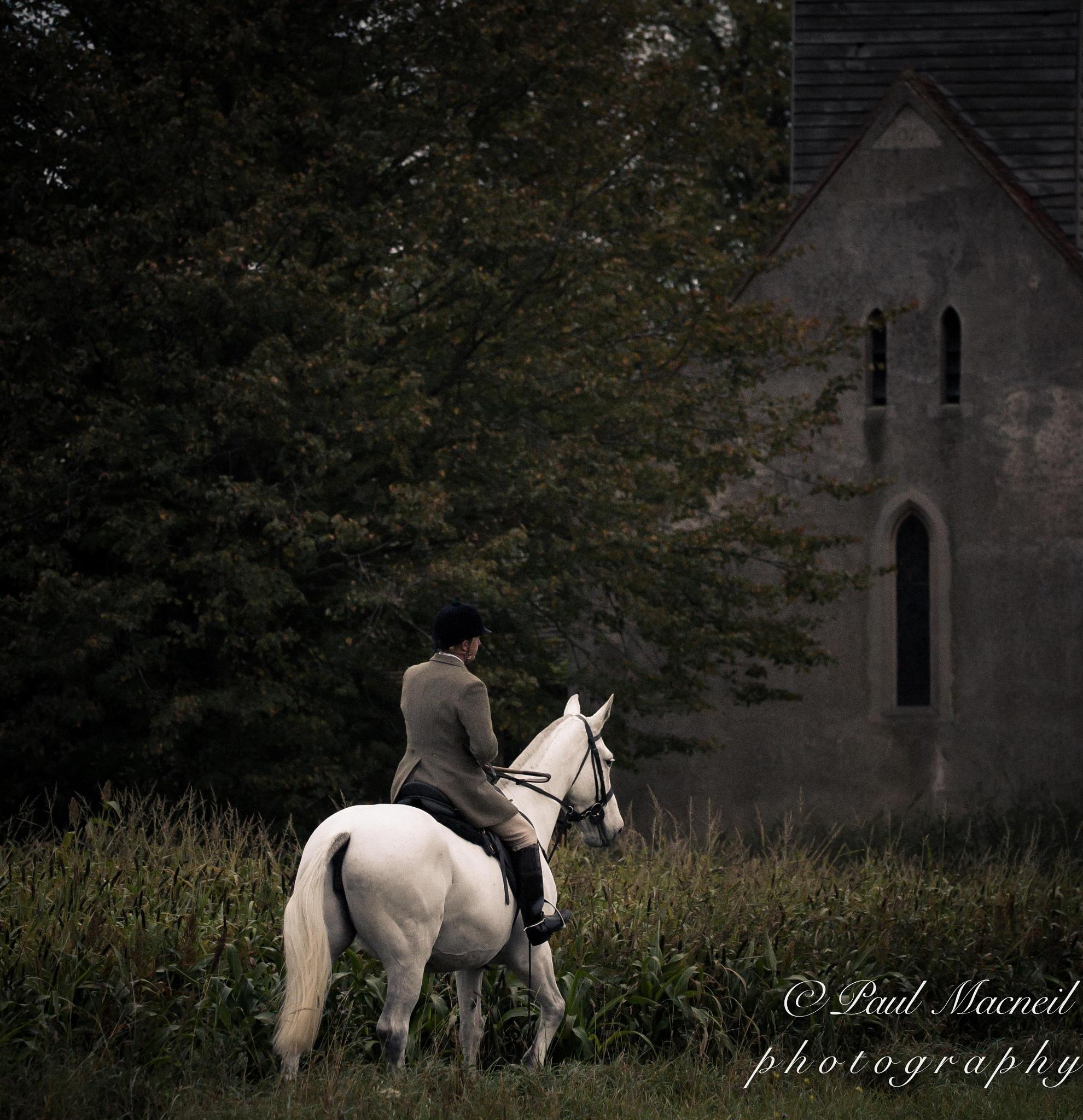 huntsman by Paulomac