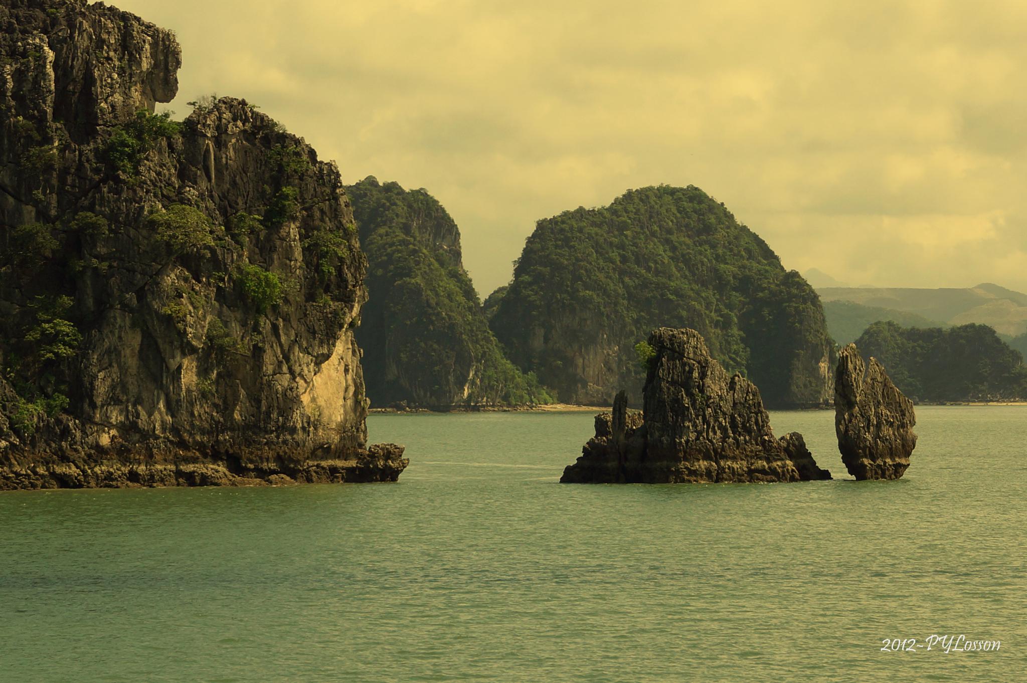 Ha Long Bay by Pierre-Yves Losson