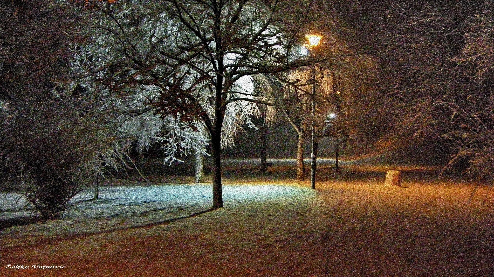 Winter 3  by Željko Vojnović