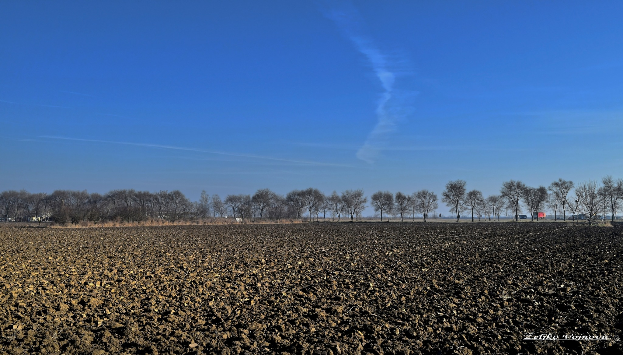 Odžaci, Vojvodina plains, Serbia  by Željko Vojnović