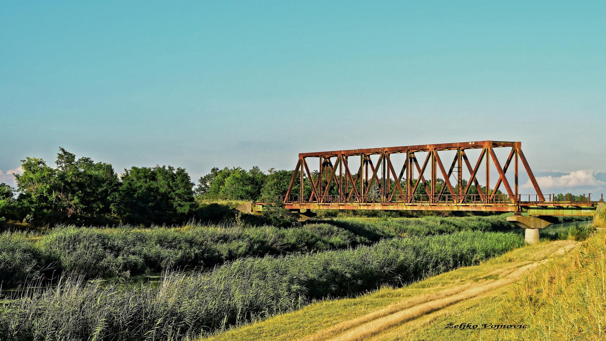 The old railway bridge ... by Željko Vojnović