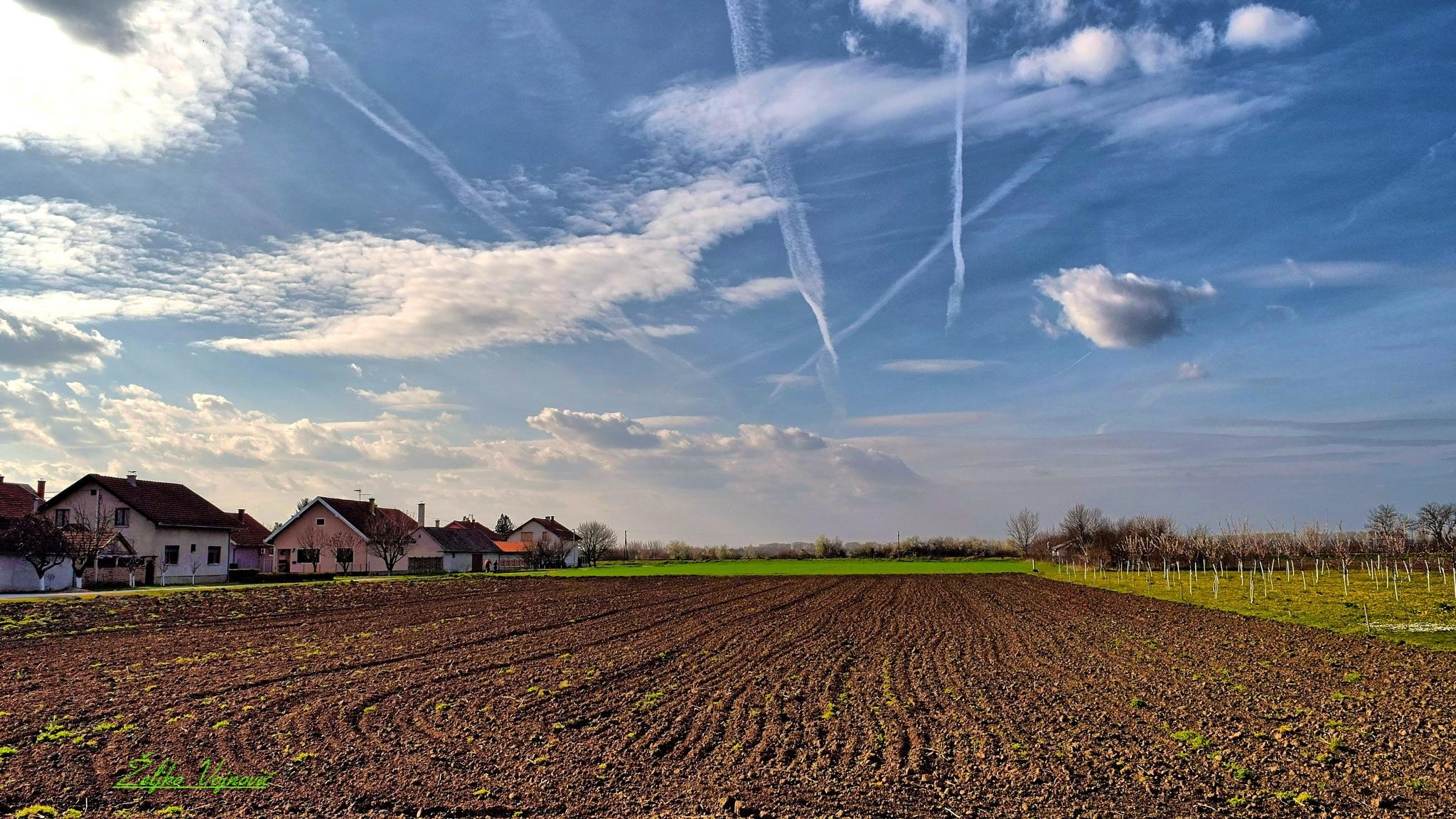 Spring, field, sky & clouds  by Željko Vojnović