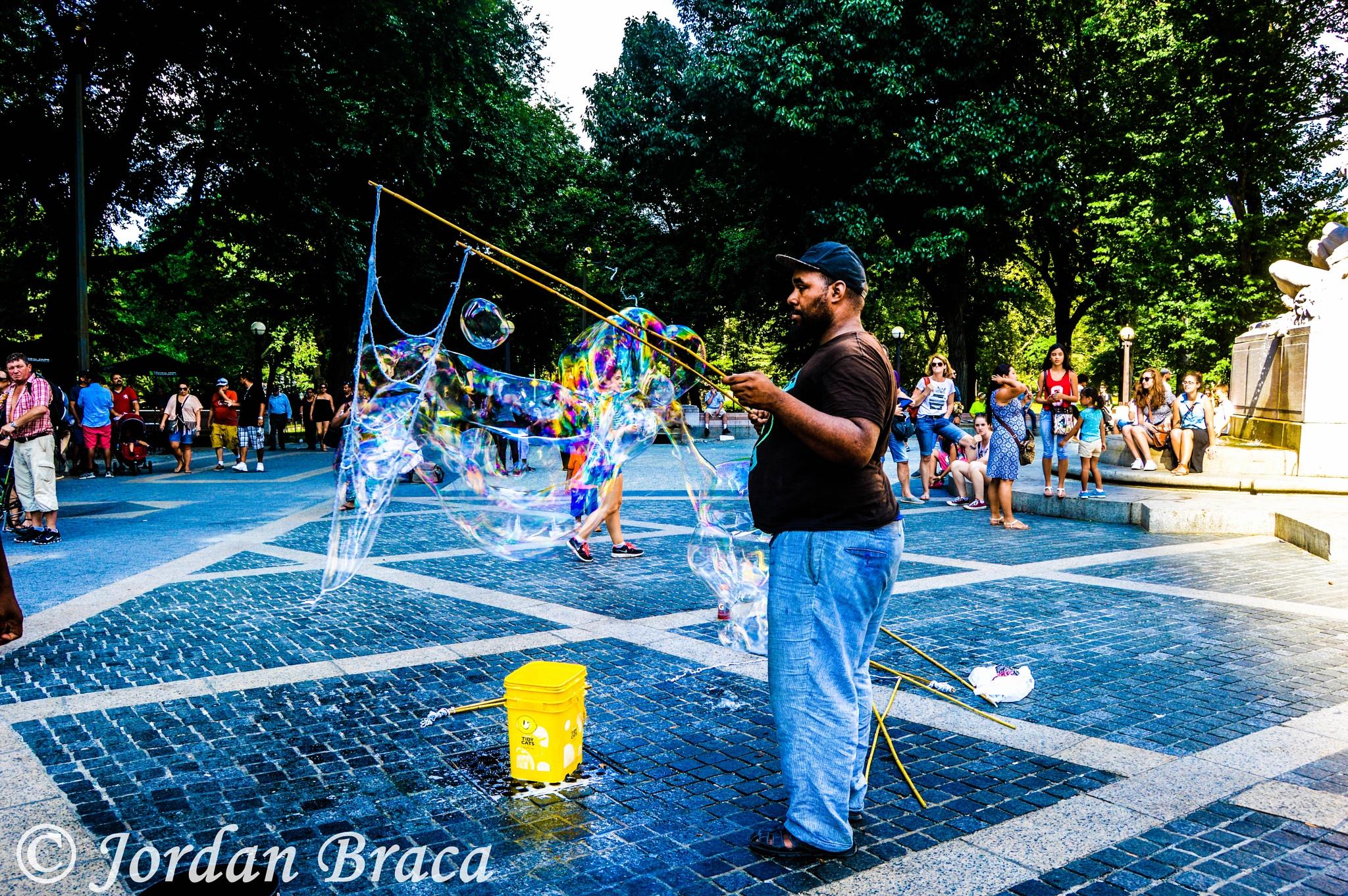 Central Park by Jordan Anne