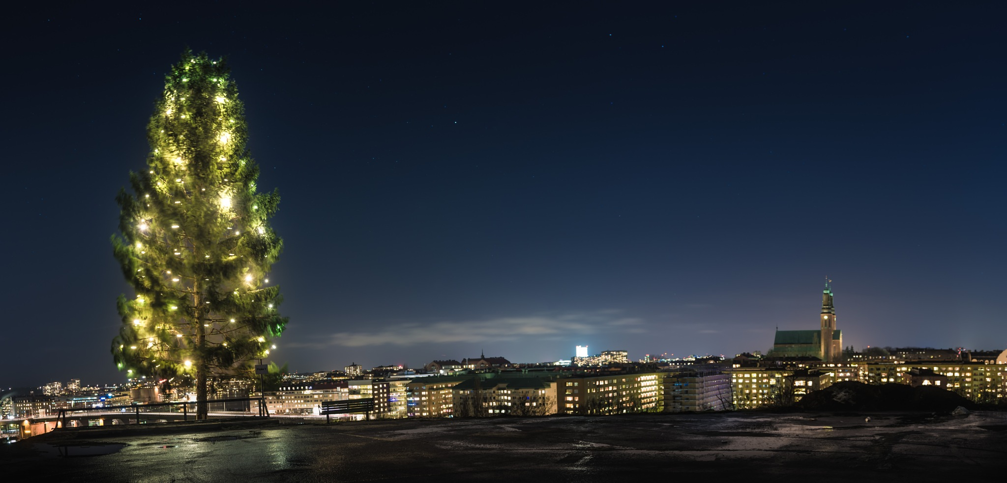 Christmas tree by Anders Green