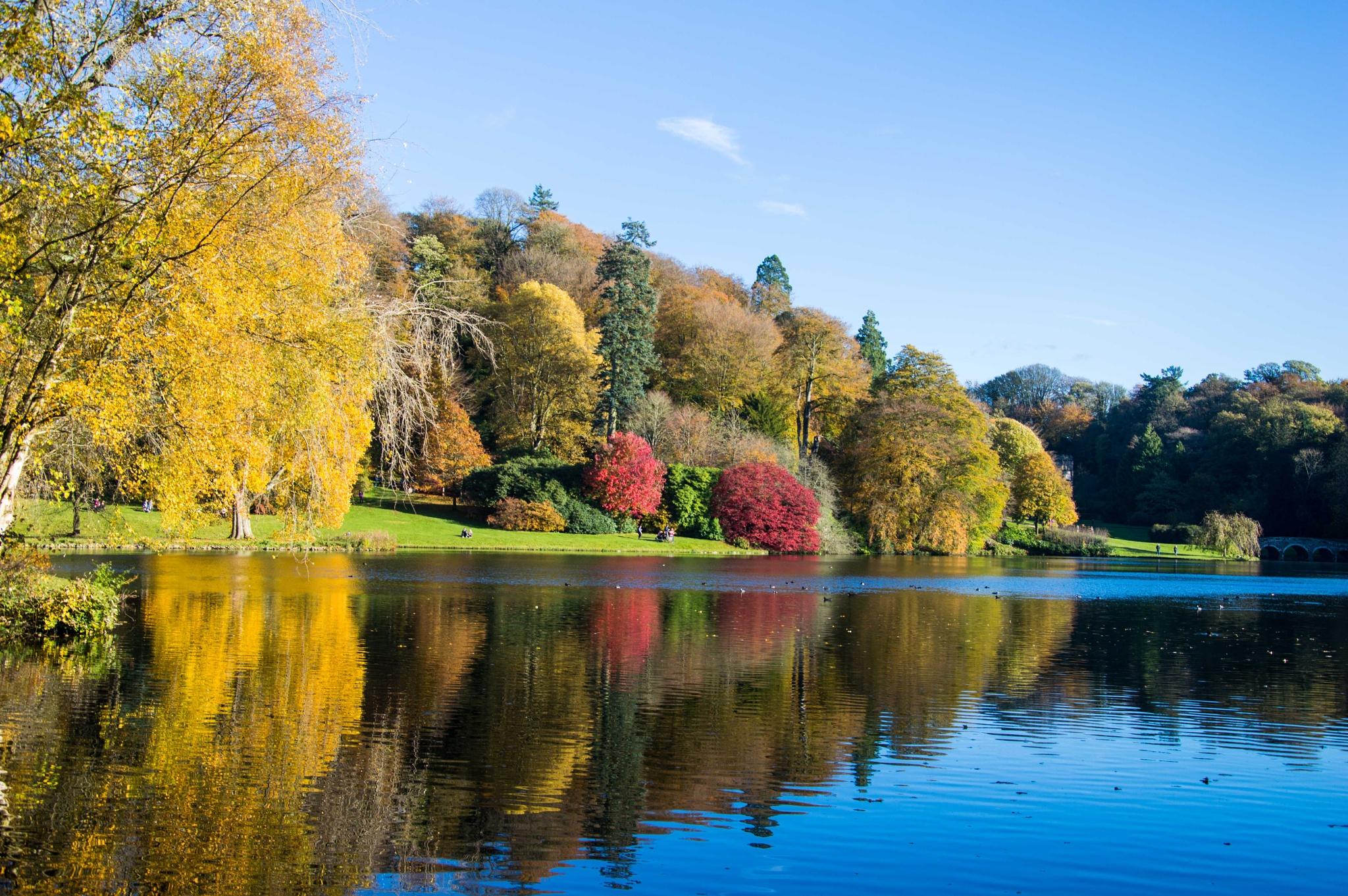 Autumn at Stourhead 2014 by Steve Billett