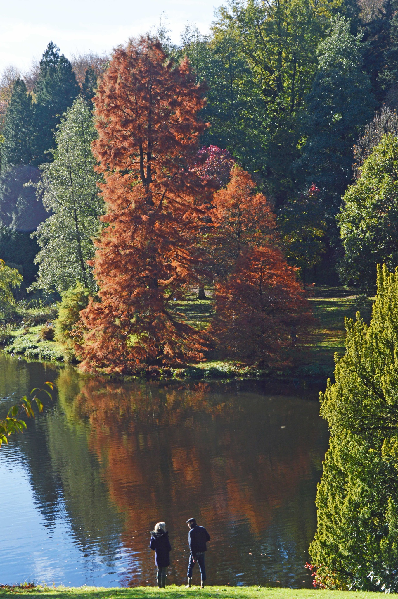Stourhead by Steve Billett