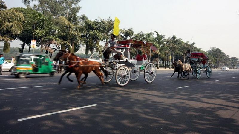 race by Babul Abdul Malek