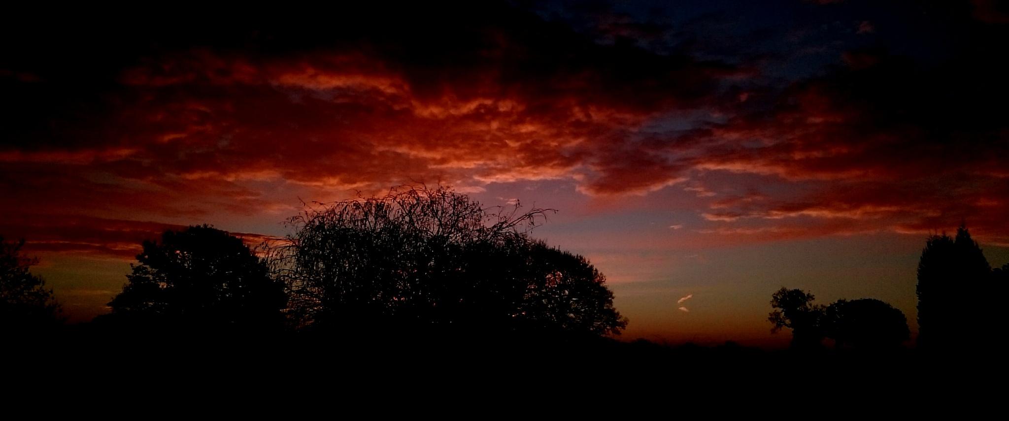Winter Sunrise by Nigel Rainton