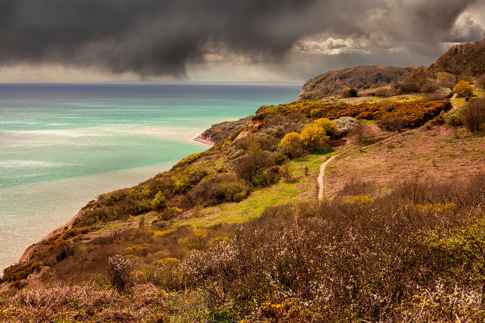 Hastings Country Park by Paul Ashby