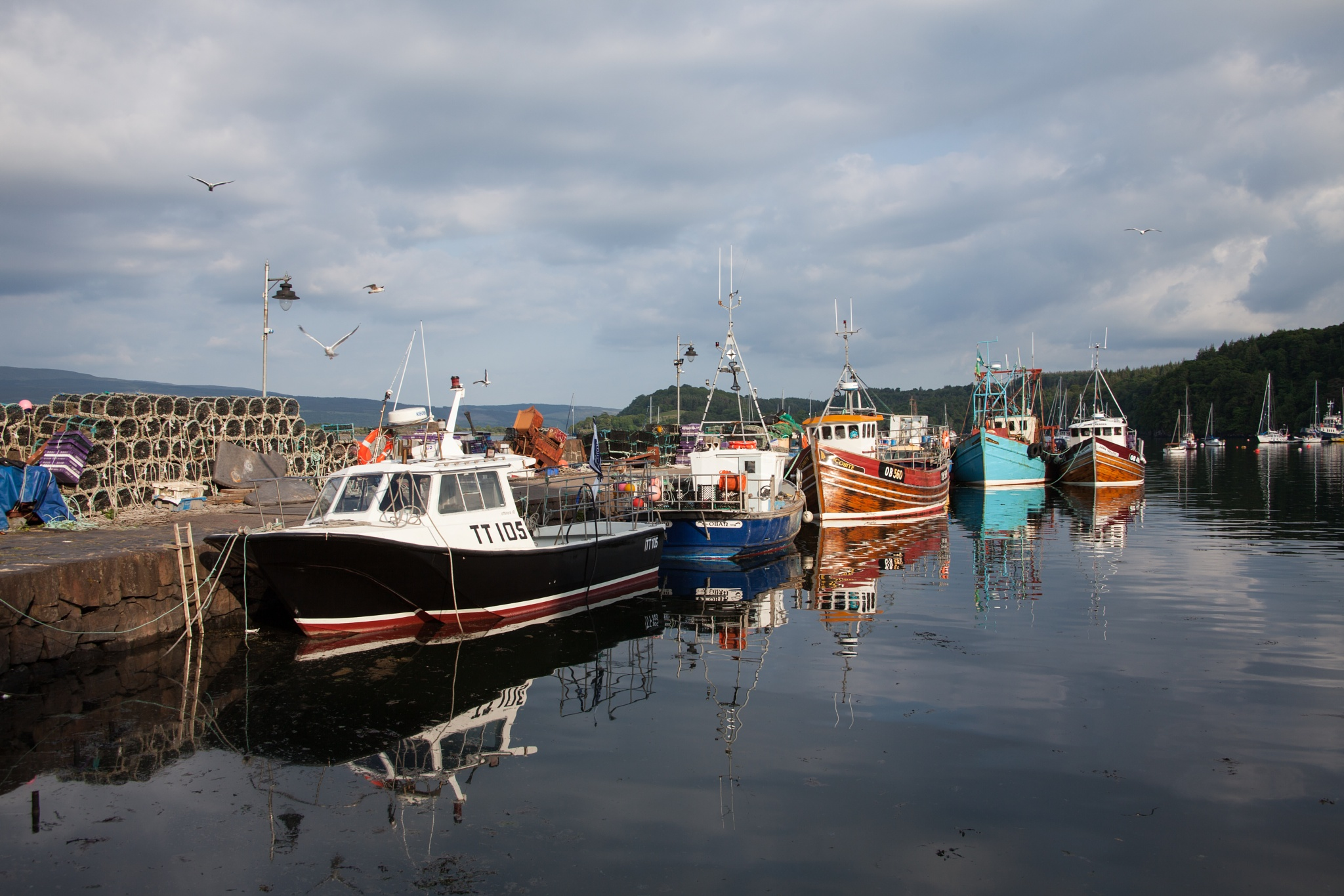 Harbour  by Simon Welch