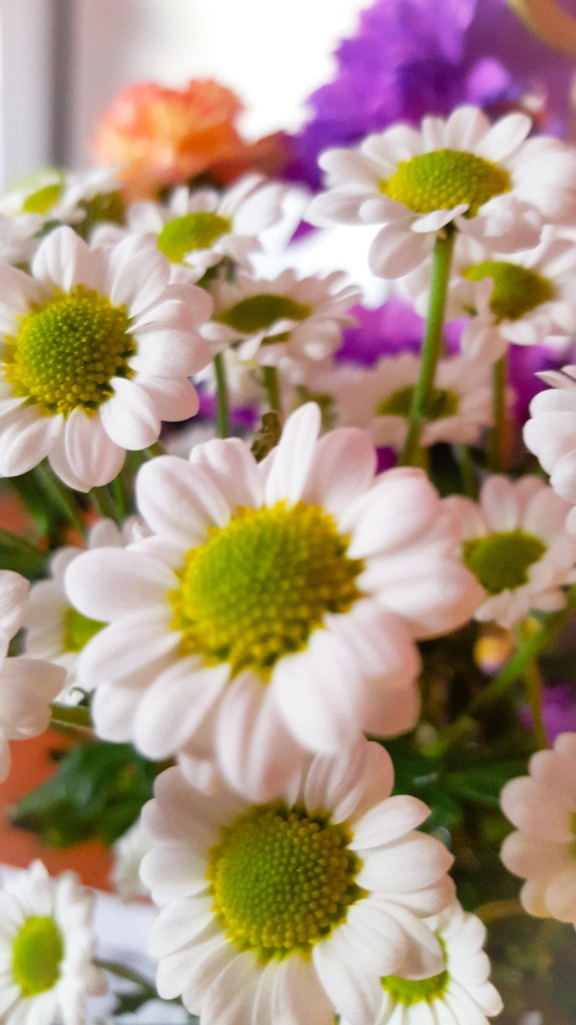 Floral by Heather Lovatt