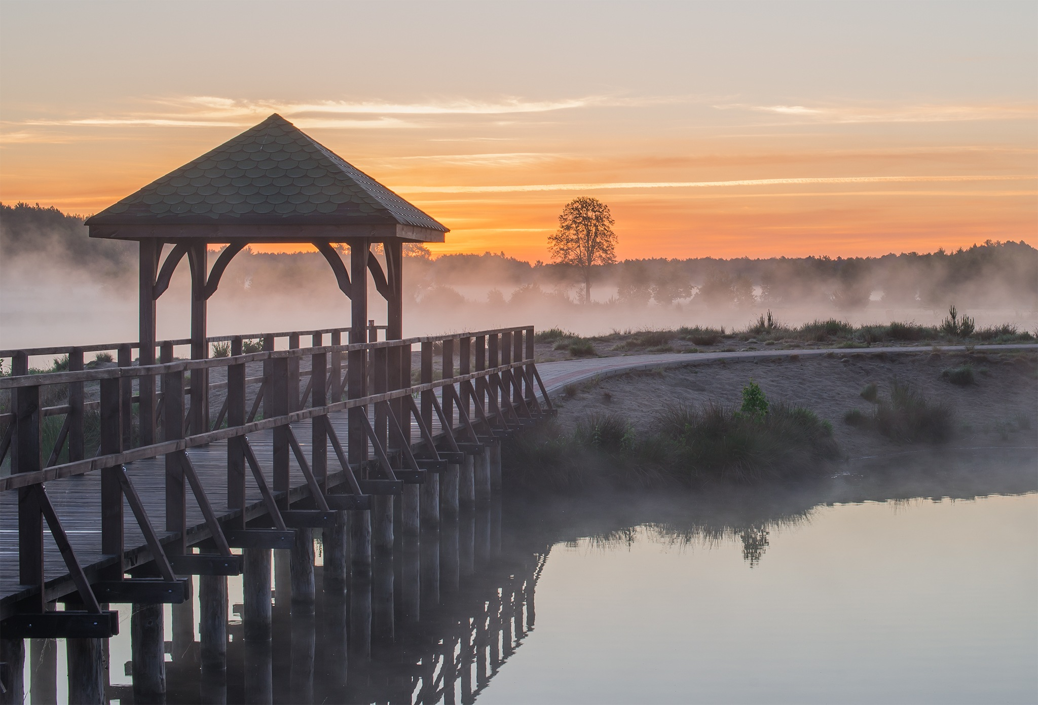 Misty Lake - part5 by Damian Pawlos