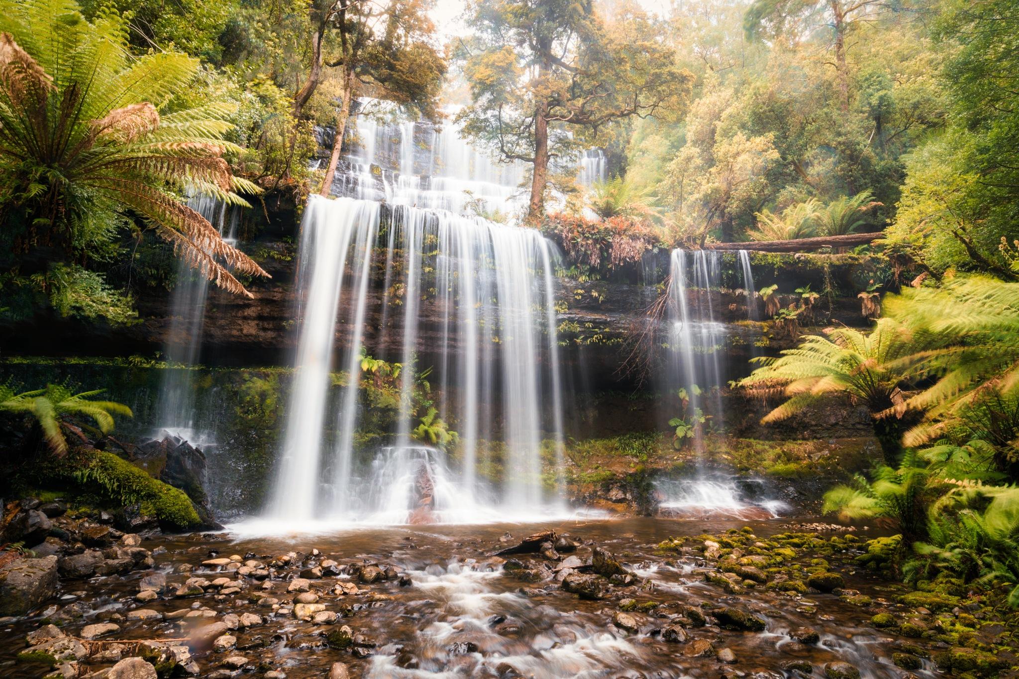 Russell Falls by Ian Liu