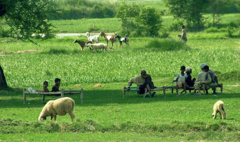 Wonderfull village. by nahid4544