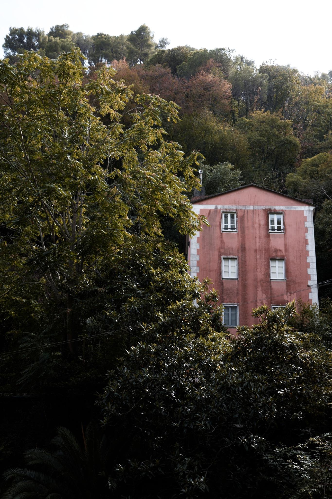 House on the trees by Andrea Zork Abbà