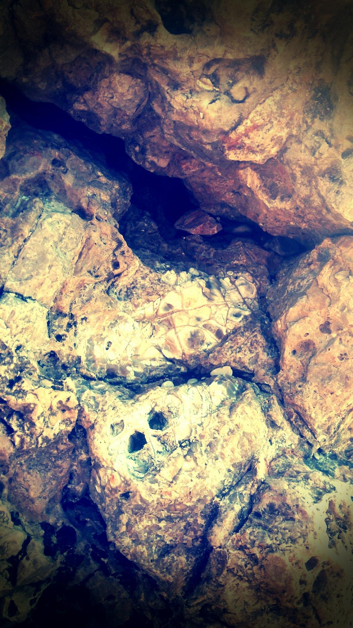 The rock anatomy  by Natasha Mitreska