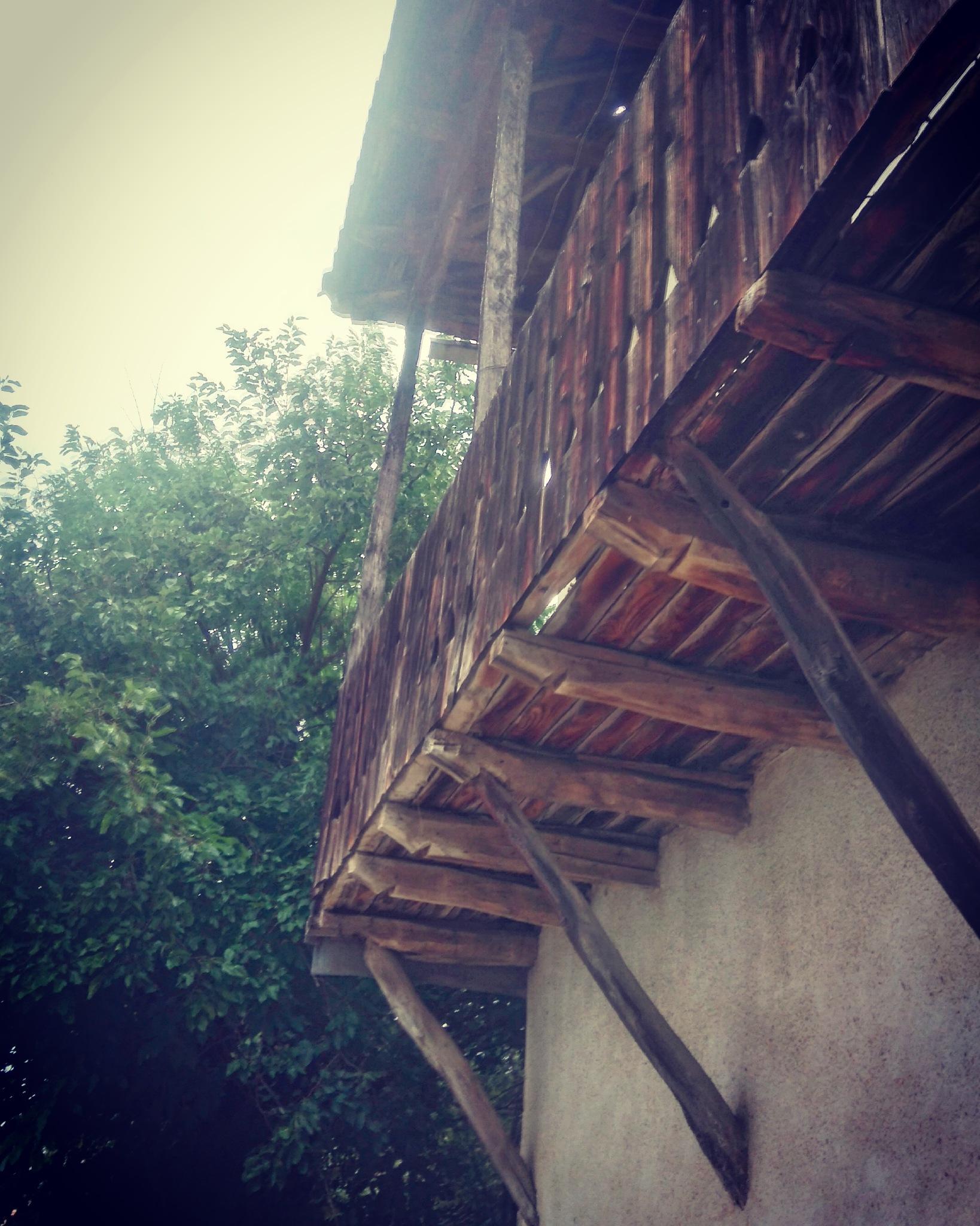 Old house  by Natasha Mitreska