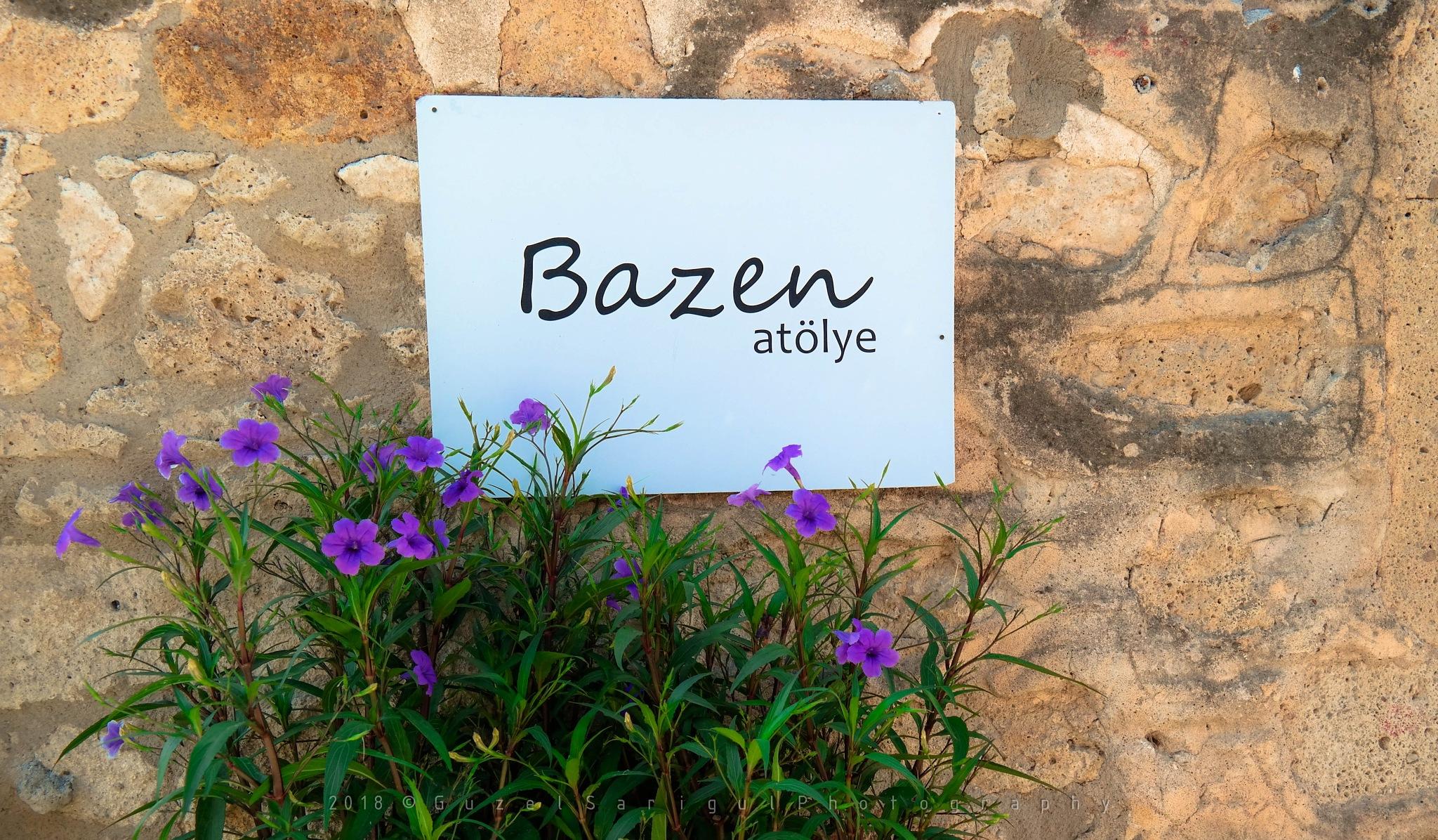 Bazen by Guzel Sarigul
