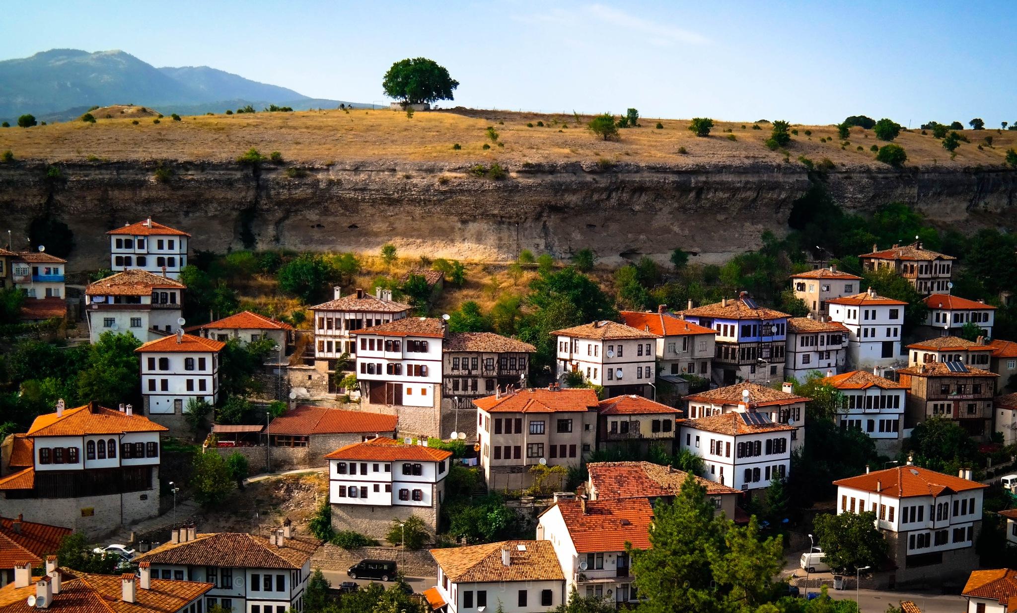 Tepe by Guzel Sarigul