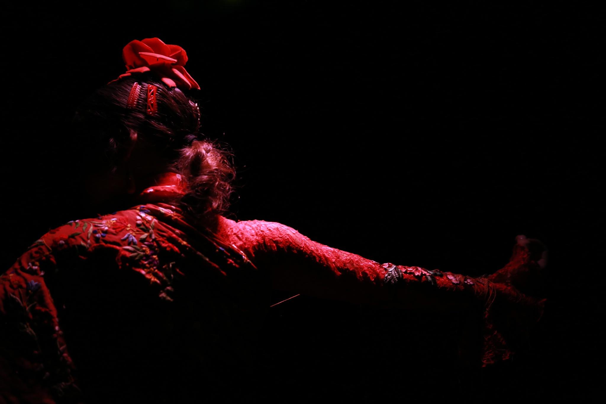 Flamenco by Michel Igielka