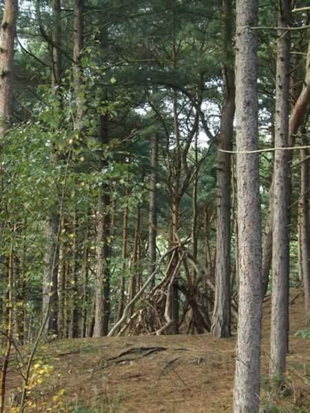 Wooden teepee by Kellee Davies Varanakis