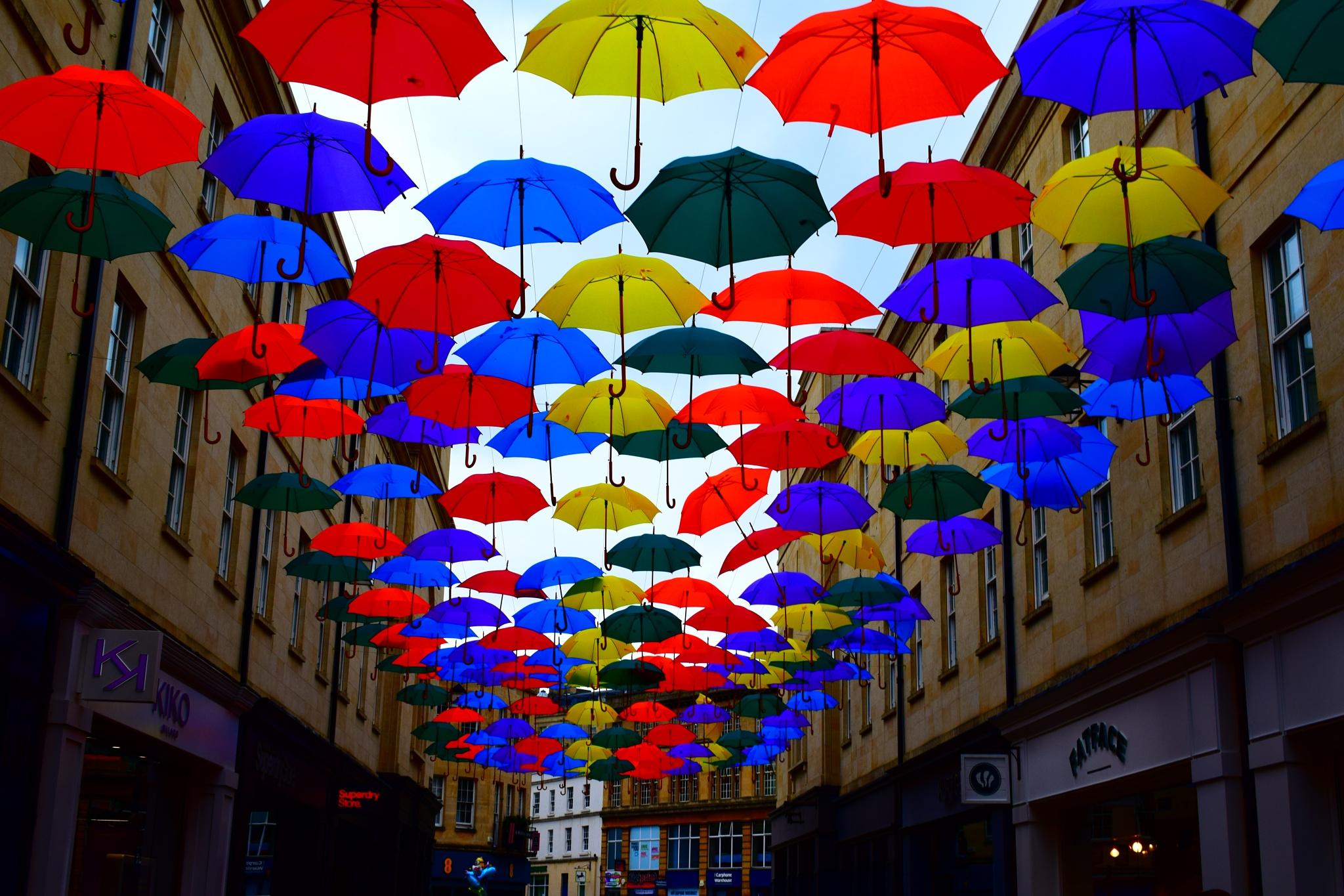 Umbrella Street by rubberheid