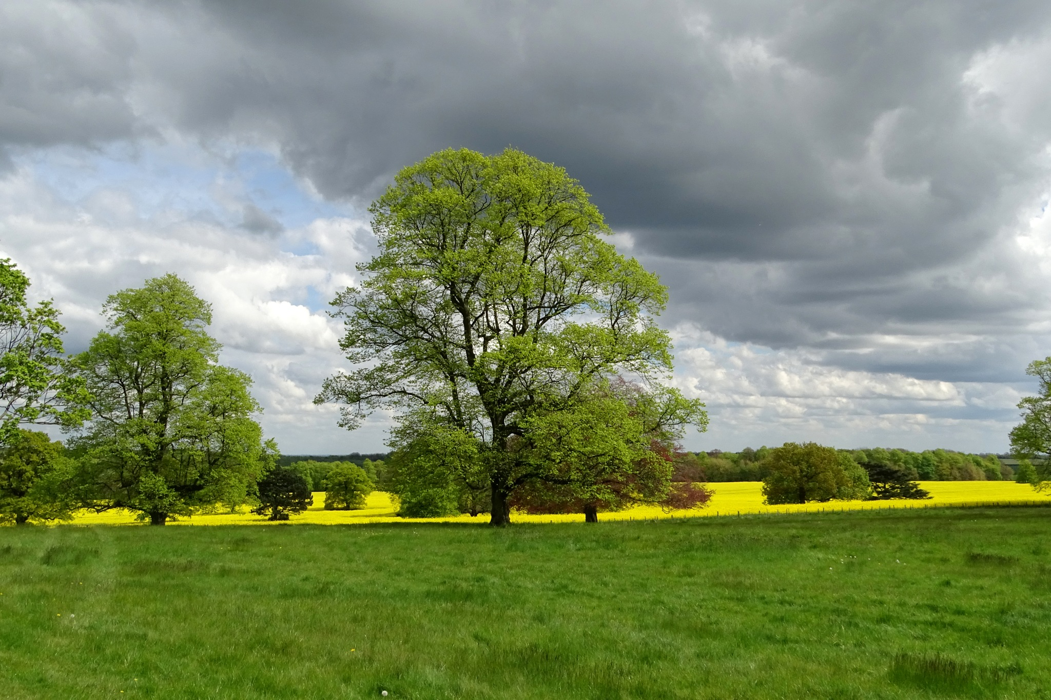 Storm Clouds gather. by kayThornton