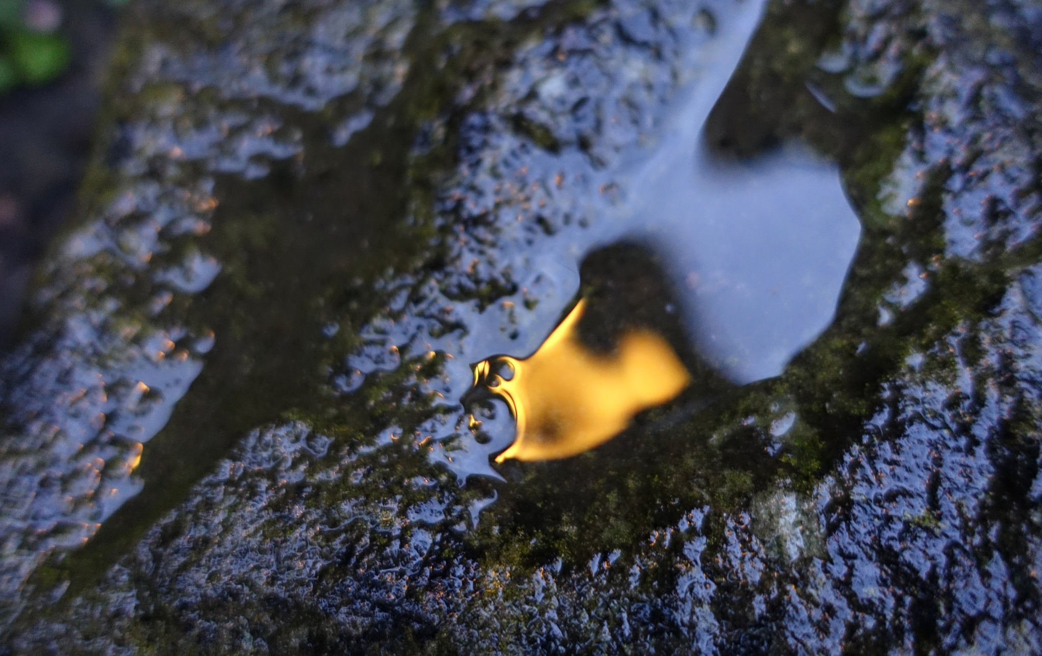 Light reflecting on a wet stone wall by kayThornton