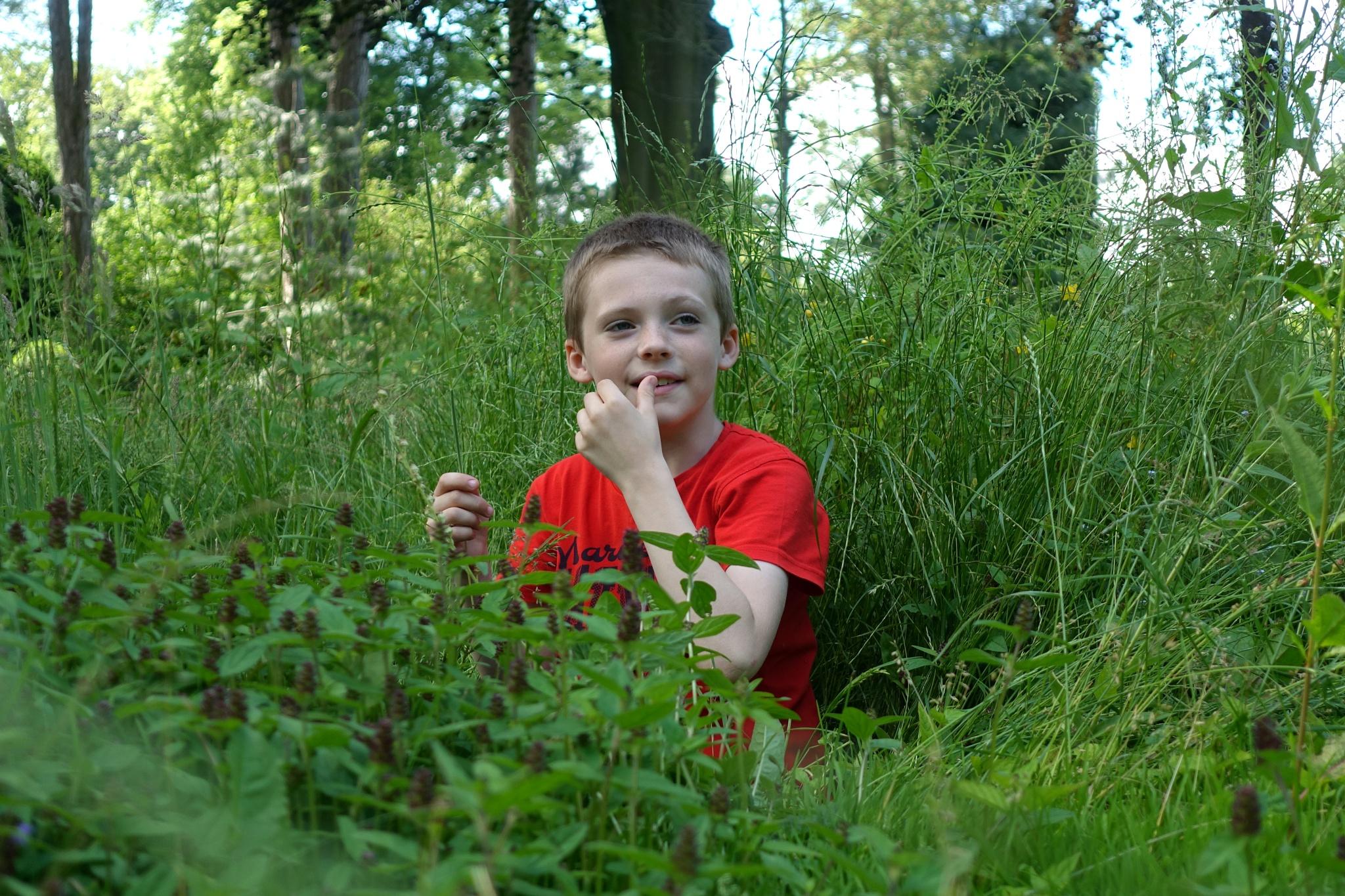 Boy in the Meadow Grass by kayThornton