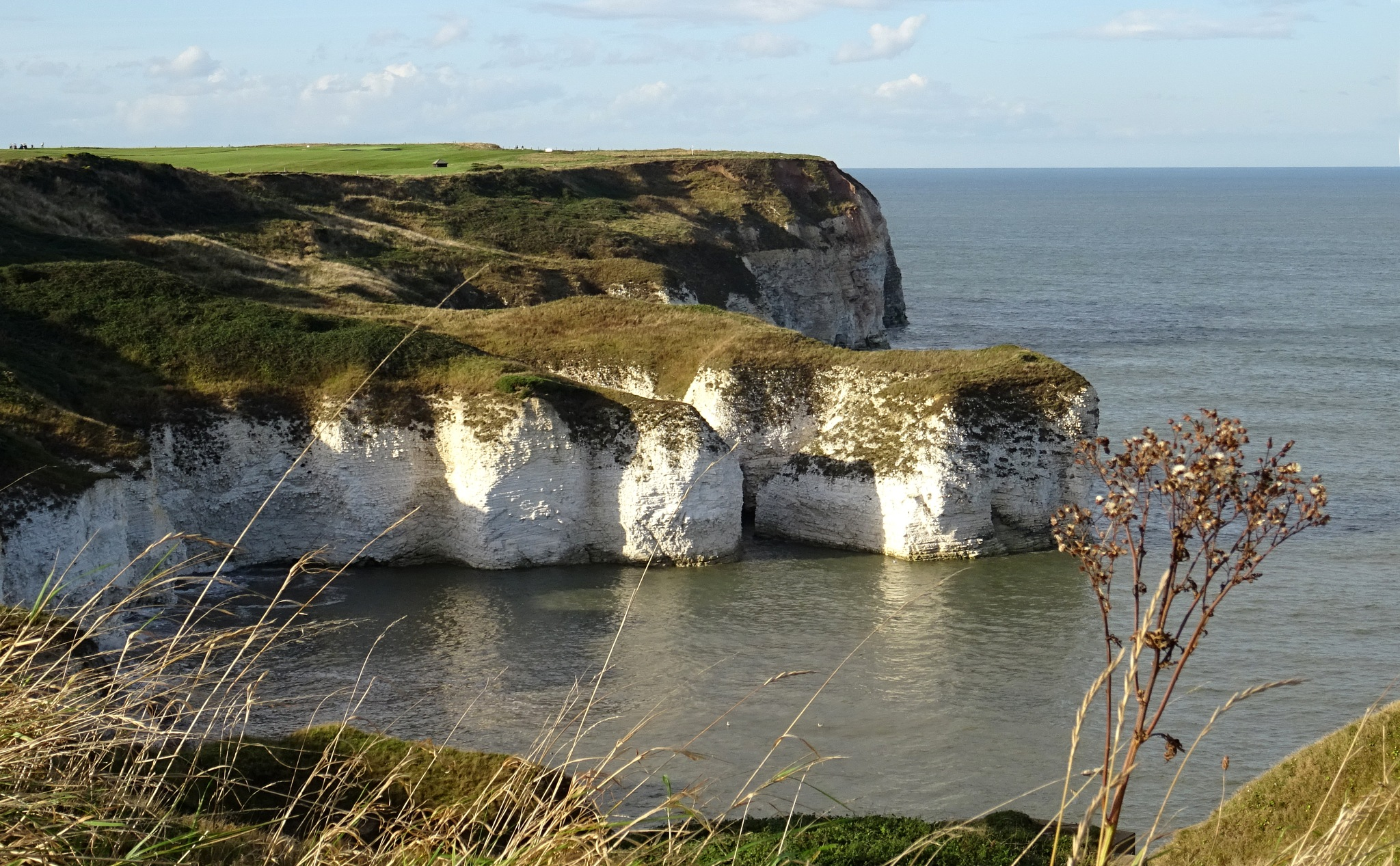 Cliff tops at Flamborough by kayThornton