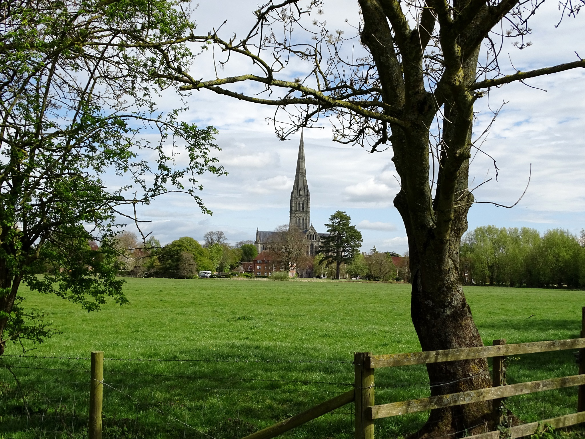 Distant View of Salisbury Cathedral. by kayThornton