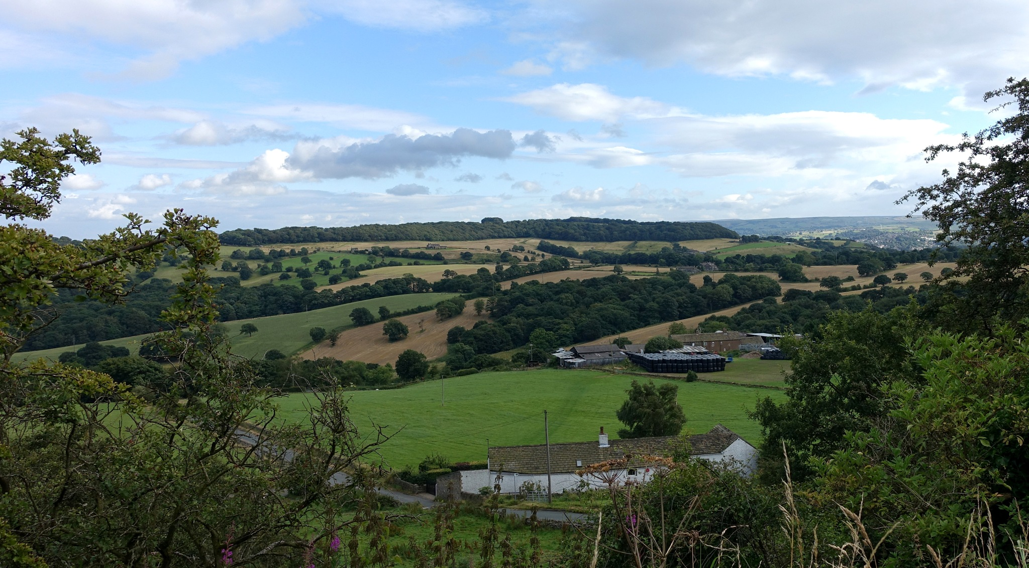 View from Castle Hill by kayThornton