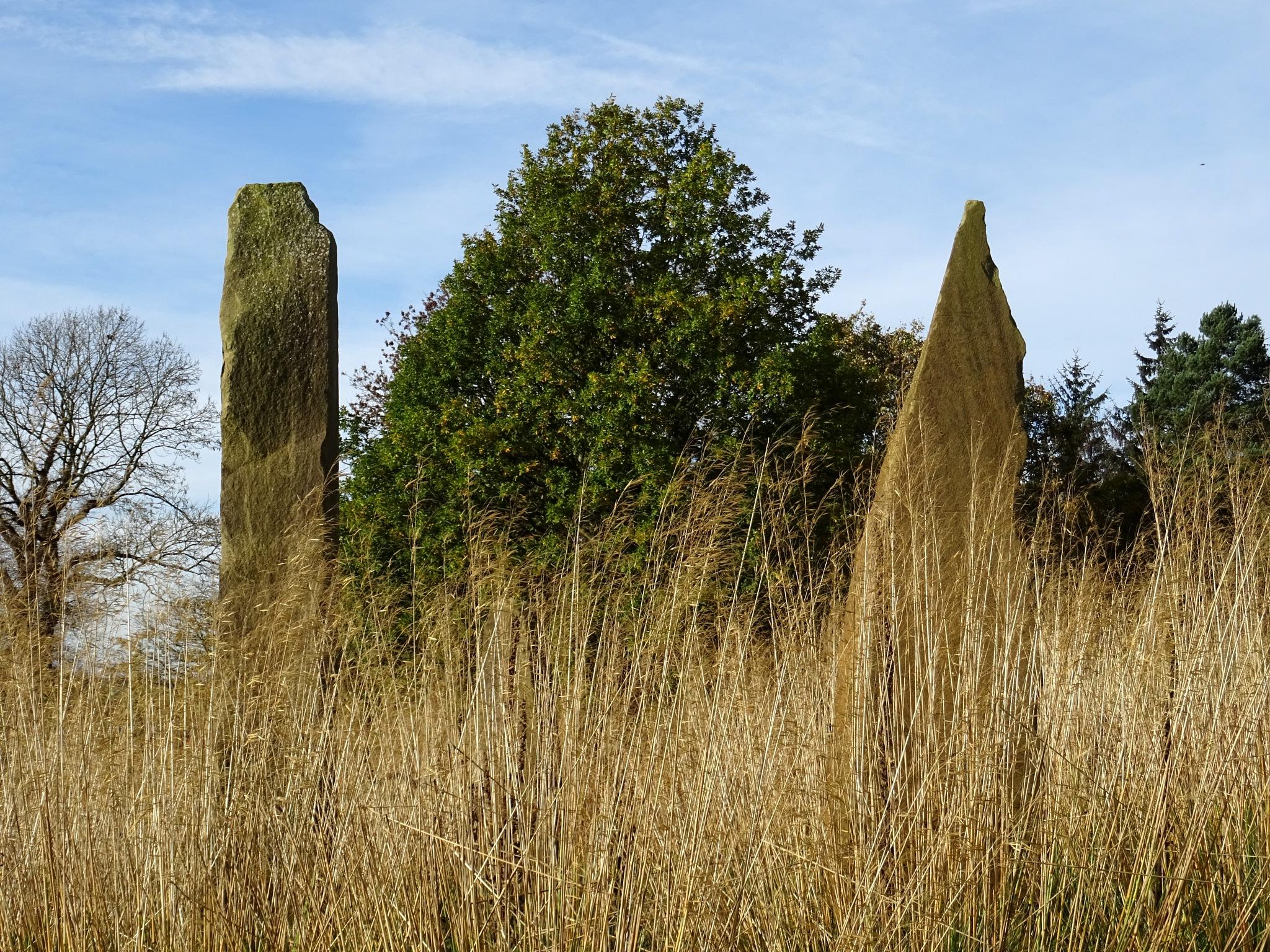 Grass and Stones by kayThornton