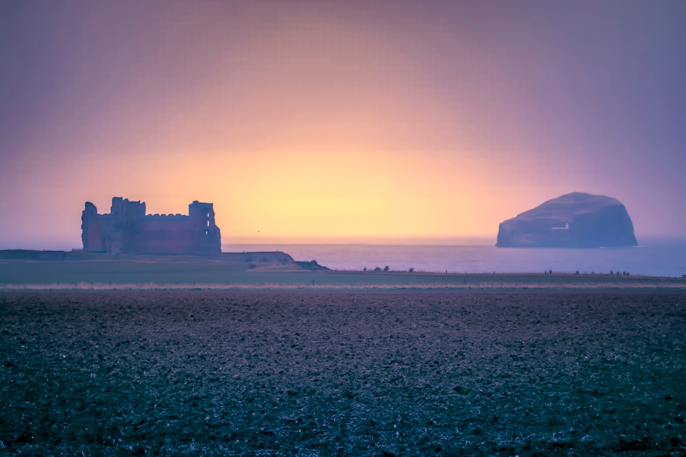 Tantallion Castle and The Bass Rock by David Drummond