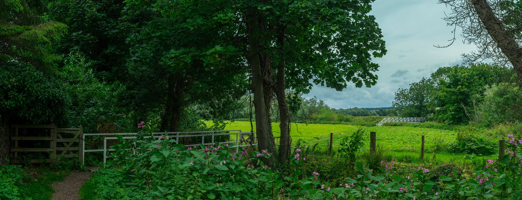 Path To Prestonmill by David Drummond