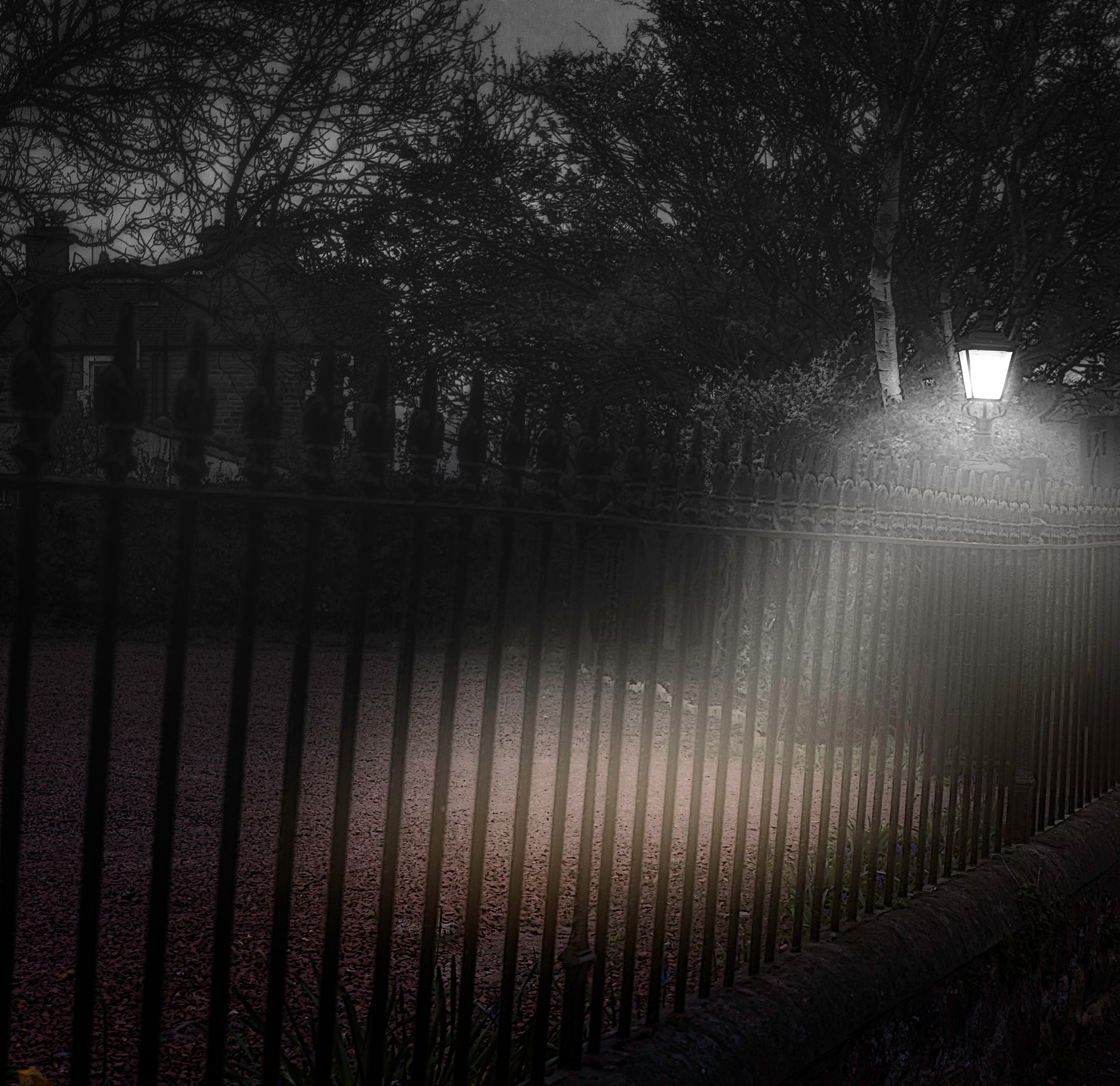 Photo in Black and White #night #light #b&w