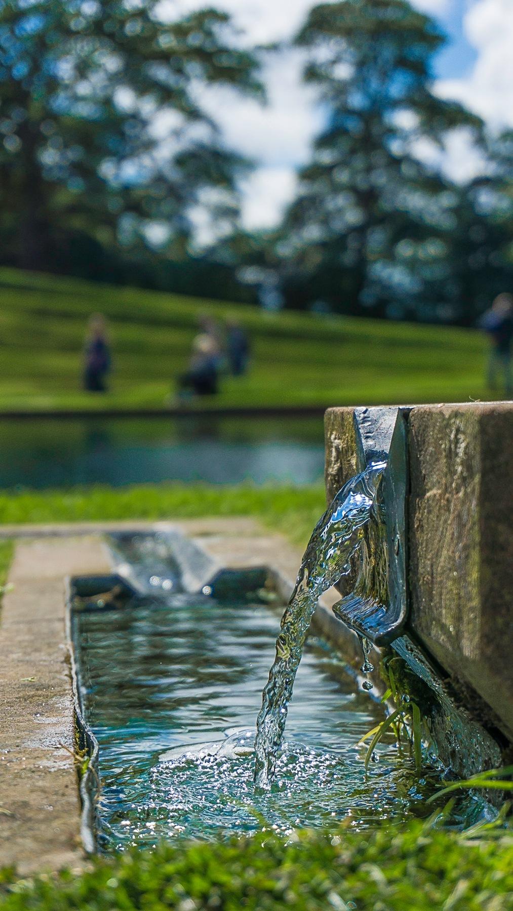 Thirsty? by David Drummond