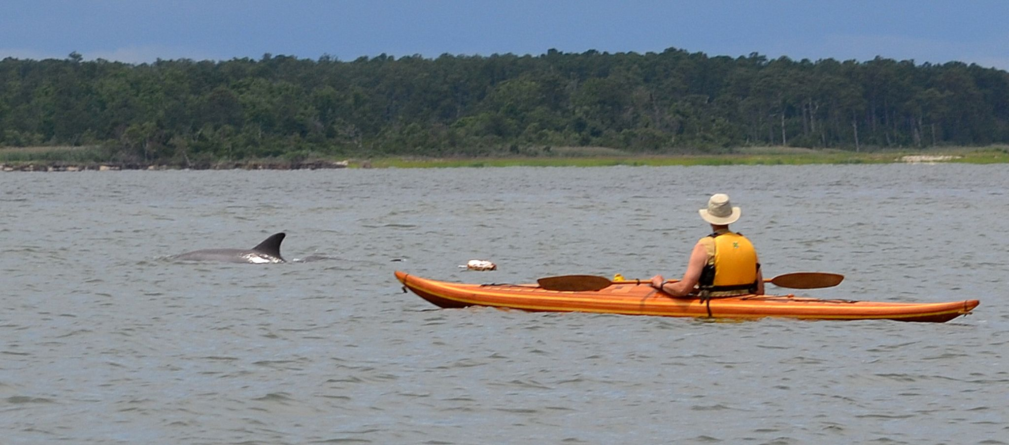 kayak dolphin 44 by jetskibrian