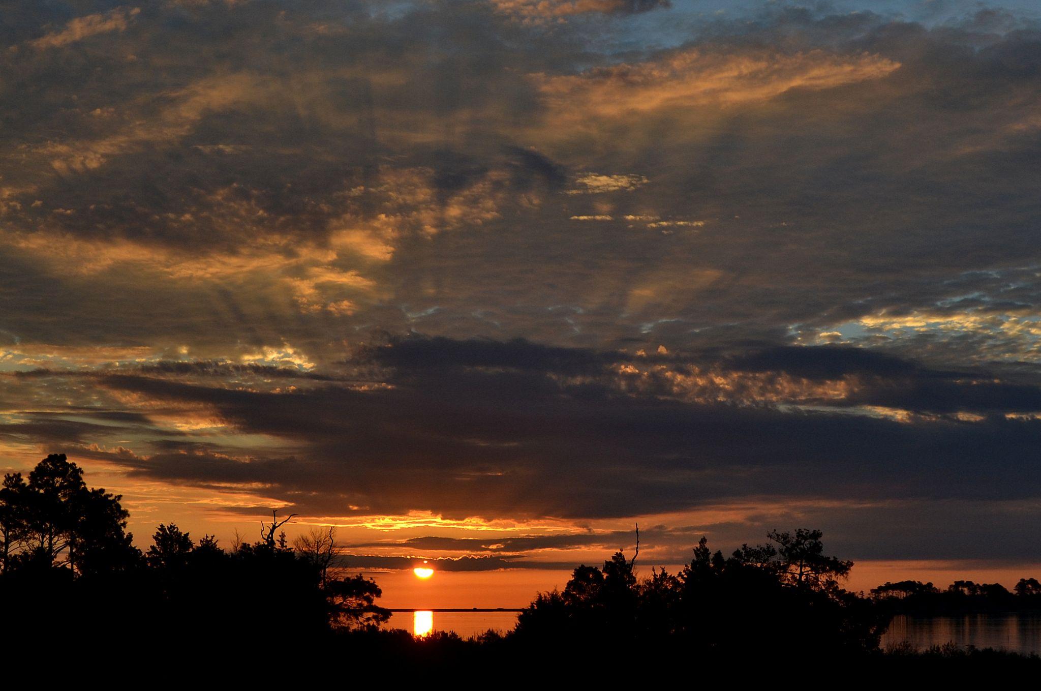 Back Yard Sun Rise by jetskibrian