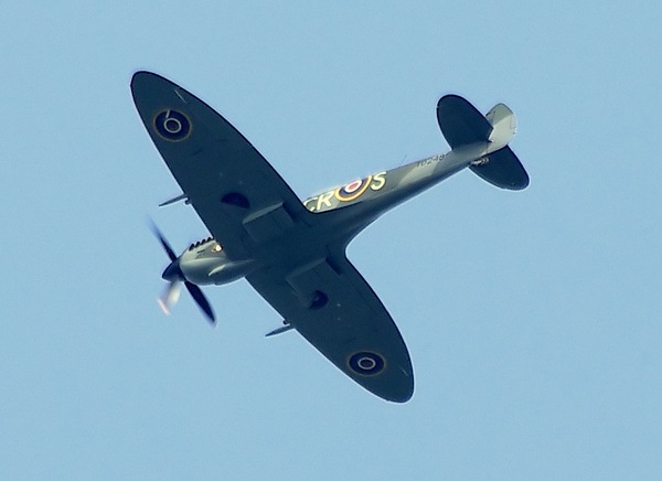 Lone Spitfire by Paul Collins