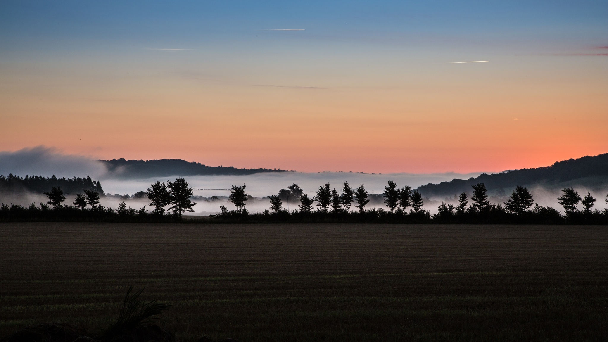 Misty morning colours by Steve H