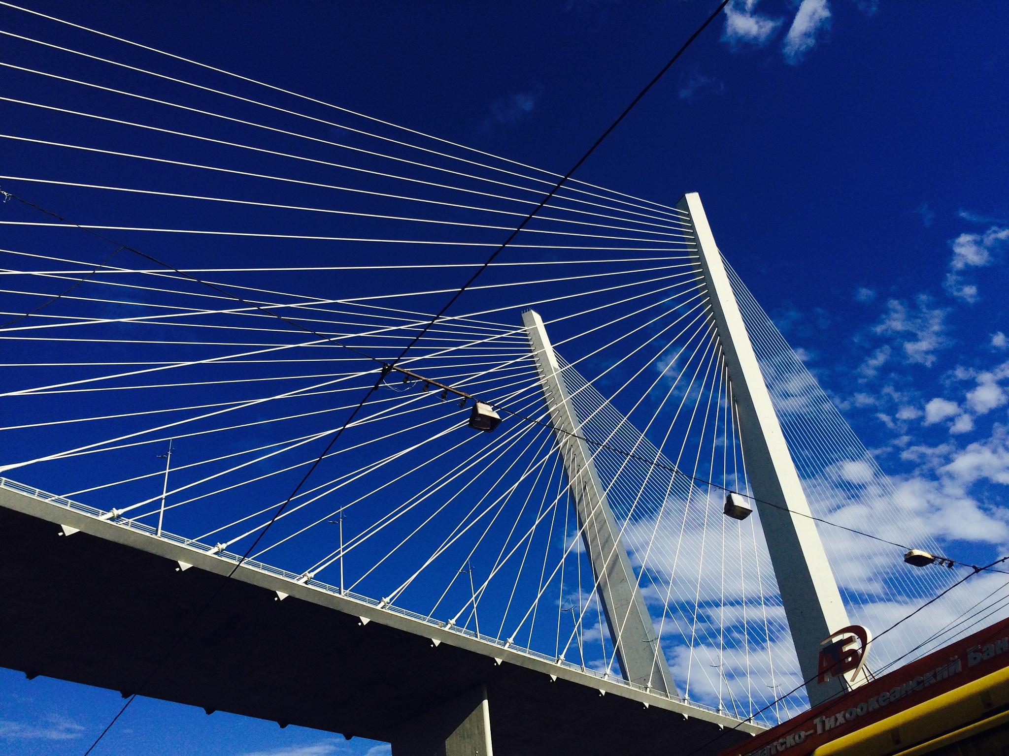 Golden bridge, Vladivostok by Martin Blum