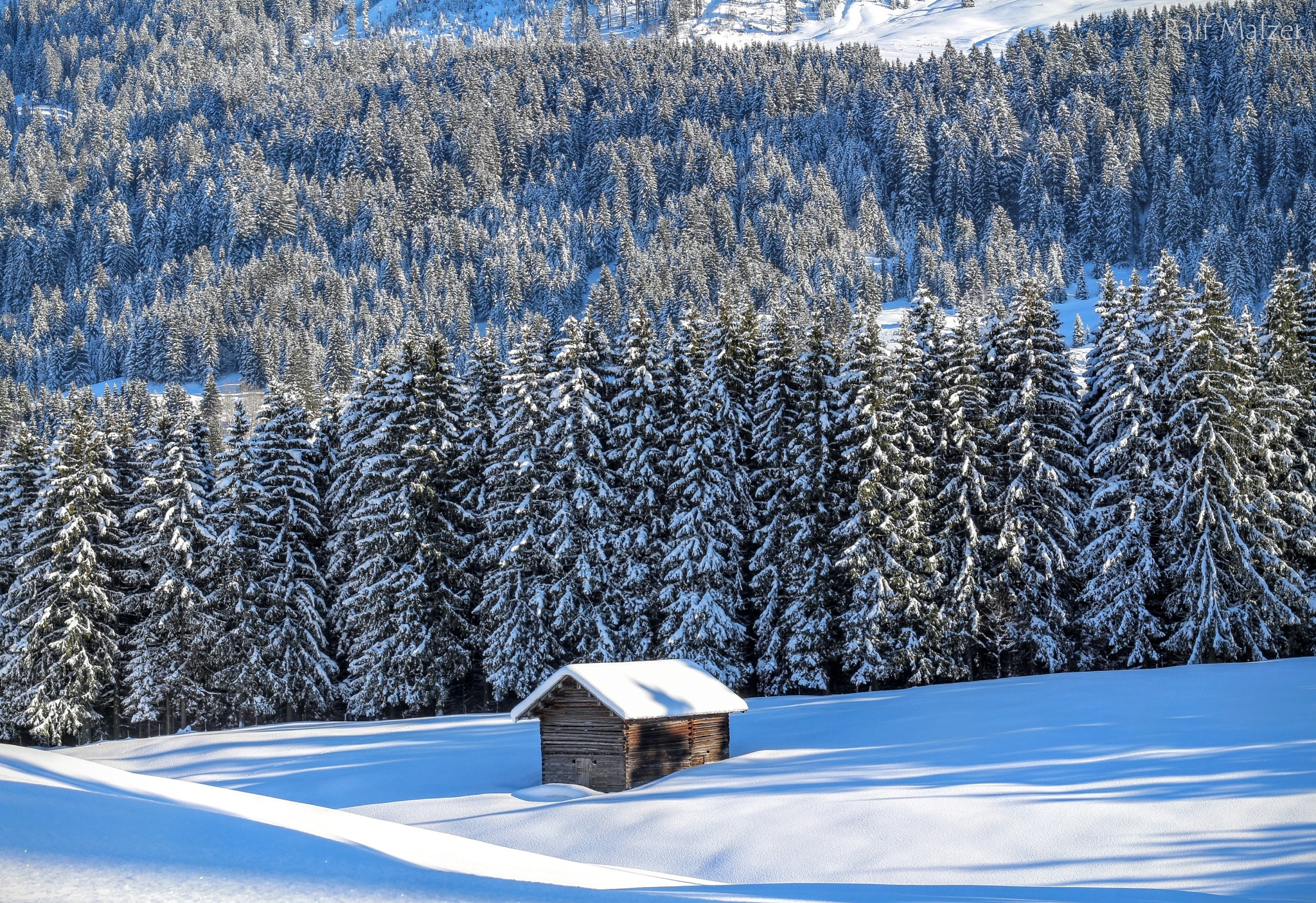 Silence nature with house by Pension Gatterhof Kleinwalsertal