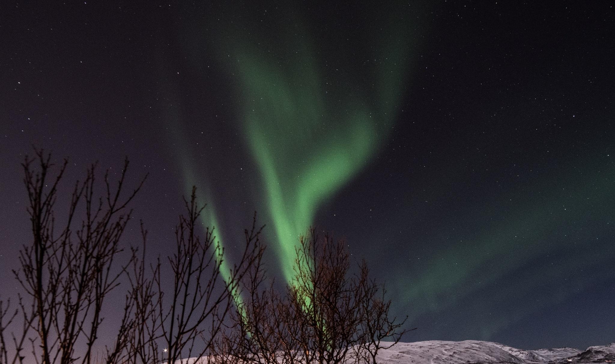 Aurora by SveinBorre