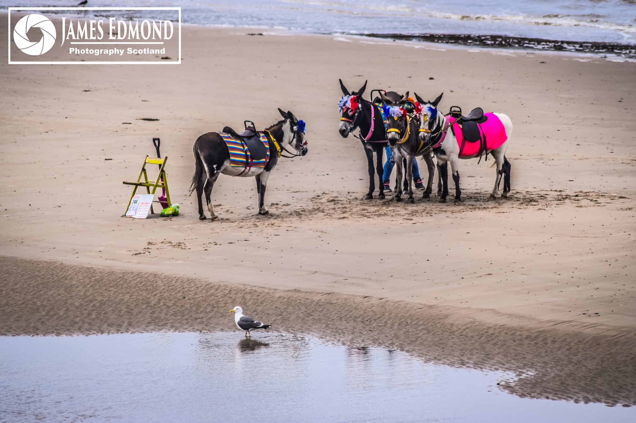 All Quiet on the Beach by James Edmond Photography