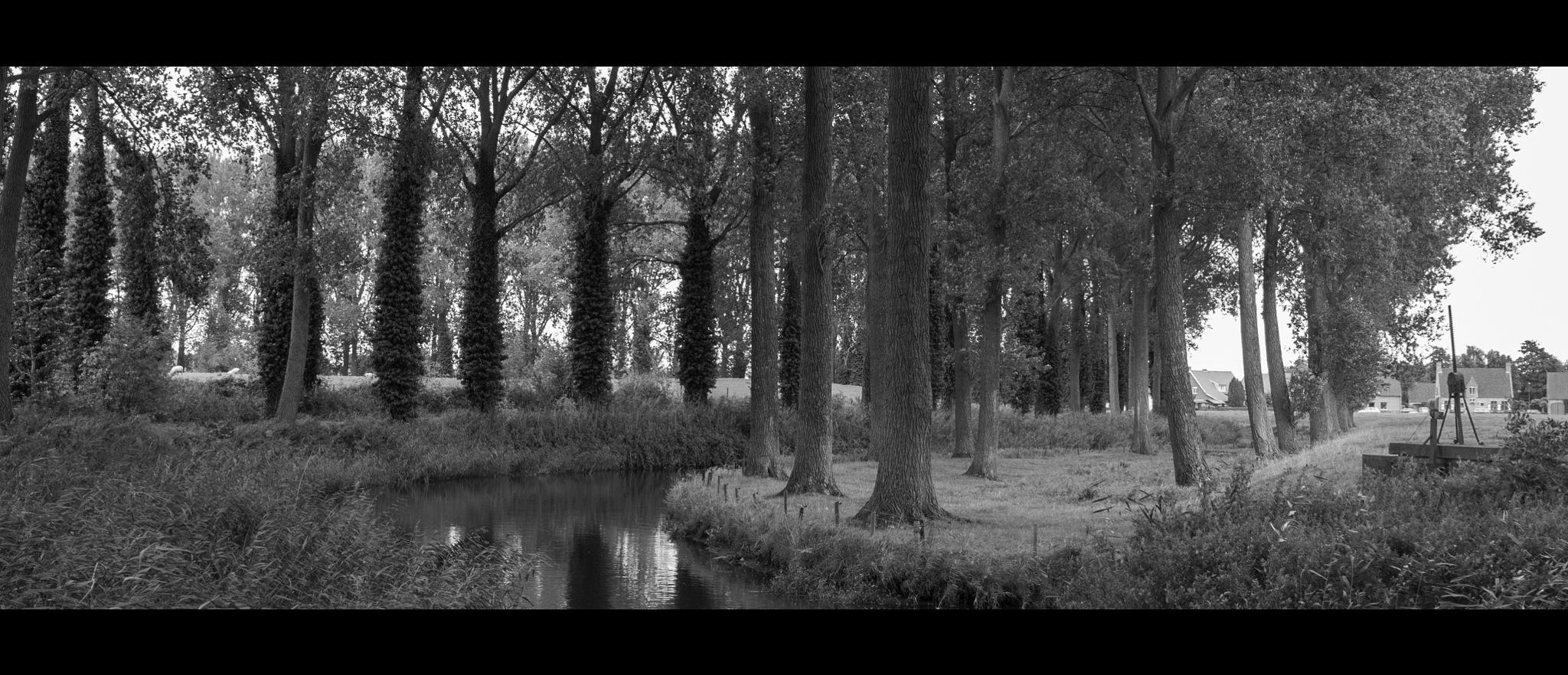 Filmisch Fotograferen by Calebout Freddy