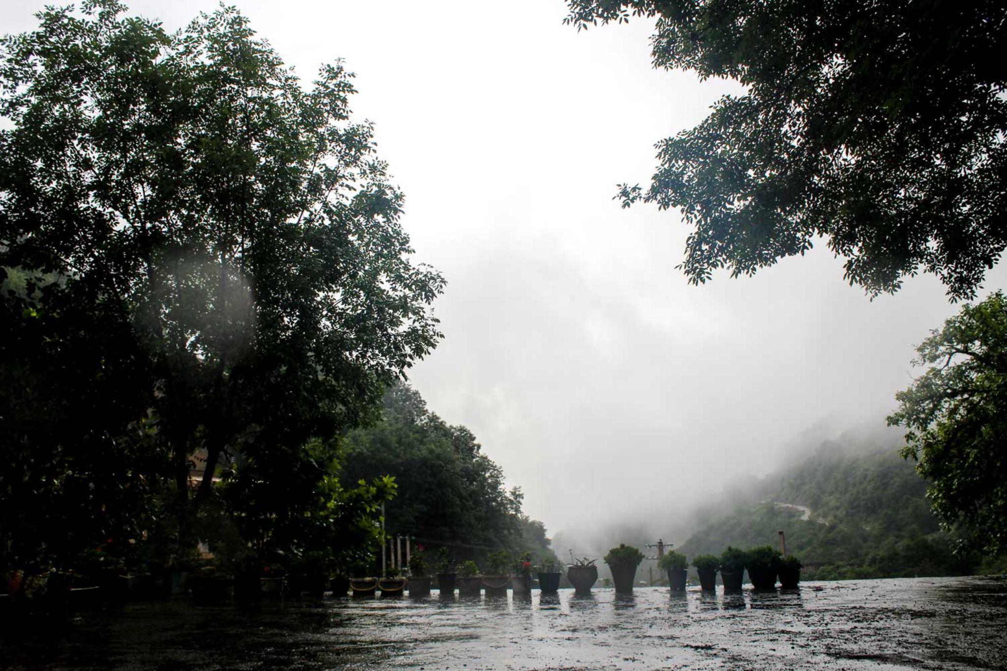 rain morning by Ahmad Safaii